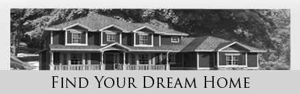 Find Your Dream Home, Ali Babaeizadeh REALTOR